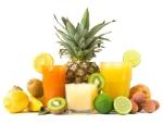 Piratenparty Früchte