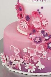Prinzessinnenparty Torte